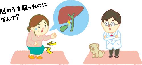 結石 原因 胆嚢